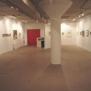 """Inside/Outside Color"", Solo Exhibition 2011 – Loft Artists Gallery, CT"